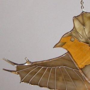 ptak-witrazowy
